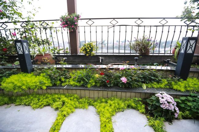 Ghé thăm ban công 30m² rực rỡ sắc hoa có view nhìn ra Hồ Tây của người phụ nữ yêu hoa cháy bỏng - Ảnh 3.