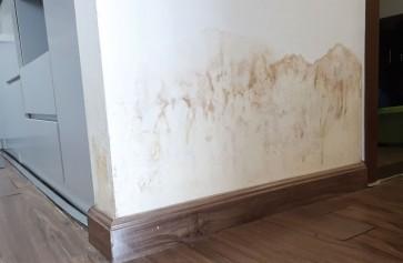 chống thấm tường nhà mới xây nên dùng loại nào hiệu quả nhất?